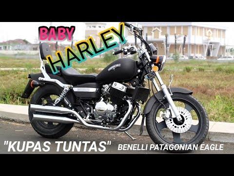 Review baby harley 2018...kupas tuntas benelli patagonian eagle