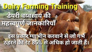 पशुओं का गर्भकाल,हीट लक्षण,गर्भधारण का सही समय,पुरे दुध पर कब आते है Dairy Farming Training 1