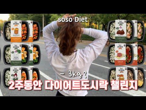 ENG) 2주동안 점심, 저녁 다이어트도시락만 먹었습니다. 충격적인 몸무게 대공개….하…… 몇키로 감량 성공? soso diet Vlog, Diet Diary for 2 Weeks