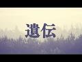 斉藤和義/遺伝(金曜ドラマ「下剋上受験」の主題歌)