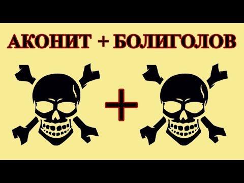Аконит + Болиголов = Гремучая смесь. (Повторение увиденного опасно для вашей жизни)