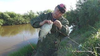 Рыбалка на Карася Ловля Карася на Соску Фидерная Оснастка Жареный Карась