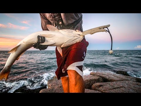 it's DEAD easy to catch giant fish NOW