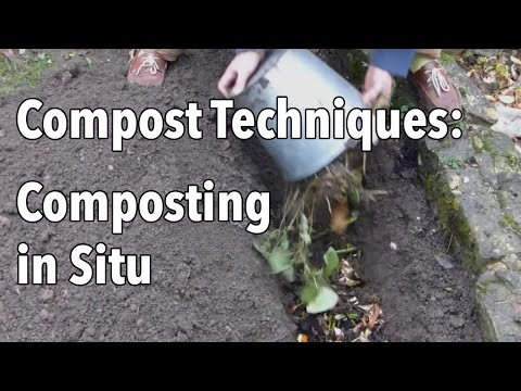 Compost Techniques: Composting in Situ