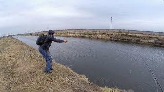 СТОЛЬКО ЩУКИ - ЕЕ ЧТО, НИКТО НЕ ЛОВИТ?! Рыбалка на щуку 2019. Ловля щуки на спиннинг на реке