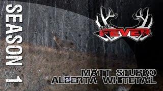 The FEVER Season 1 - Matt