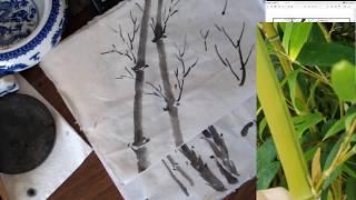 Генрі жити: вивчити прості і зрозумілі бамбукова картина ручної(2)