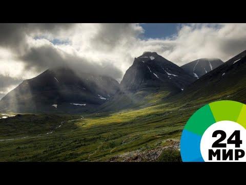 Онлайн видео высокая с натуральной