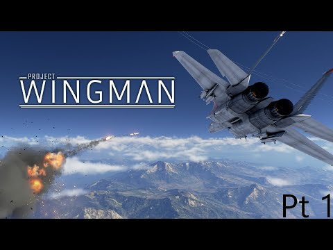 Project wingman Pt1  