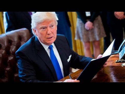 Week 1 of Donald Trump's presidency