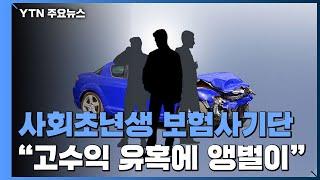"""사회초년생 보험사기단 '알바'?...""""발 담그…"""
