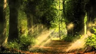 Richard Wagner - Lohengrin Overture (Wilhelm Furtwängler)