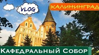 VLOG.Калининградский кафедральный собор. ВИДЕО-ПРОГУЛКА.(