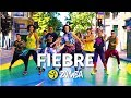 FIEBRE Ricky Martin Zumba Choreo By Alix With Chilean Team Ft Wisin Yandel mp3