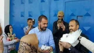إطلاق ناصر الزفزافي وباقي المعتقلين بأمر من الملك
