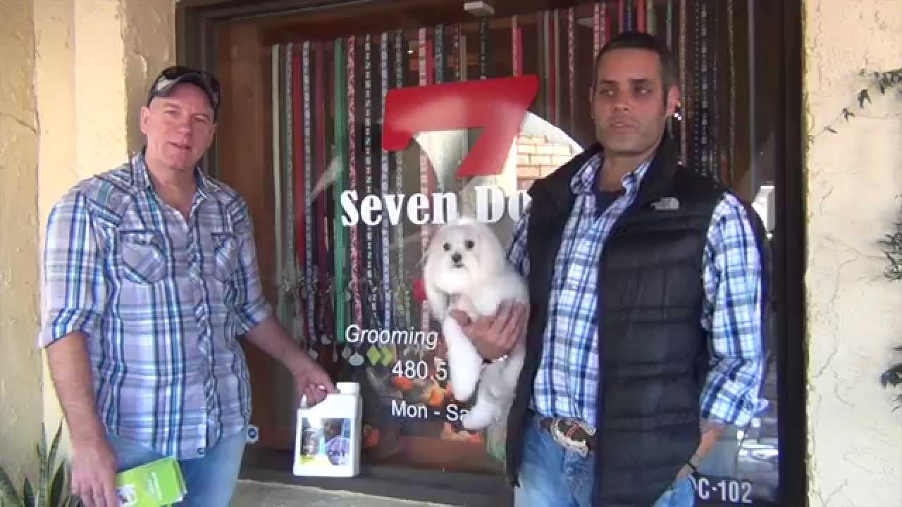 Synbiont kennel wash 7 dogs grooming scottsdale az youtube synbiont kennel wash 7 dogs grooming scottsdale az solutioingenieria Image collections