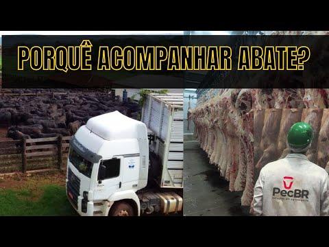 Cursos EAD valem a pena? (Ensino a distância) from YouTube · Duration:  3 minutes 29 seconds