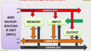 8085 MICROPROCESSOR – BUS ORGANIZATION AND INITIATED OPERATION  (हिन्दी) ! LEARN AND GROW