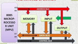 8085 Microprocessor – Bus Organization And Initiated Operation  (हिन्दी)