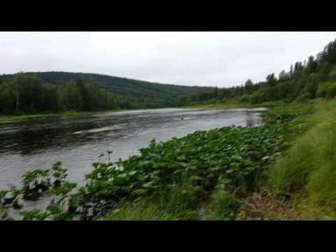 рыбалка в пермском крае весной на хариуса