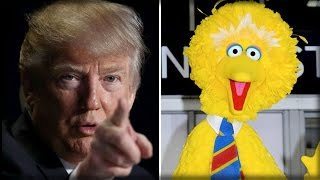 KILL SHOT! LIBERALS ARE FURIOUS OVER WHAT TRUMP IS ABOUT TO DO TO BIG BIRD ON SESAME STREET