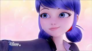 {Miraculous Ladybug AMV} Dancing With a Stranger Video