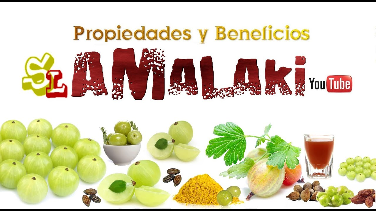 Image result for jugo de amalaki o grosella de la India