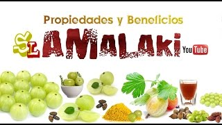 Beneficios del Amalaki Jugo de Amalaki Propiedades del Amalaki para que sirve el Amalaki