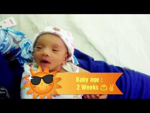 Bayi berusia 2 Minggu¦ 2 Weeks Baby ¦ The Baby Diary