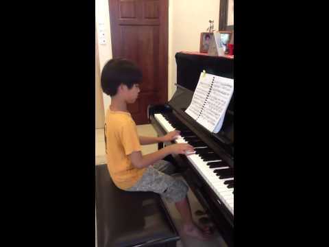 Für Elise (Beethoven) Now with video (of me playing it)