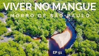 QUINTA PRAIA e MANGUE DO PANÃ   MORRO DE SÃO PAULO 8   COMO CHEGAR 51