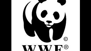 How To Make WWF Logo with Adobe Illustrator, Tutorial Create Draw WWF