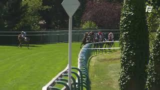 Vidéo de la course PMU PRIX ROCKING CHAIR