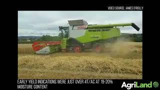 Harvesting winter barley in Co. Kilkenny