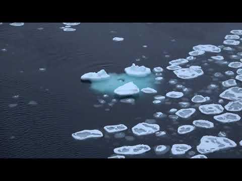 Pancake Ice in the Arctic Ocean