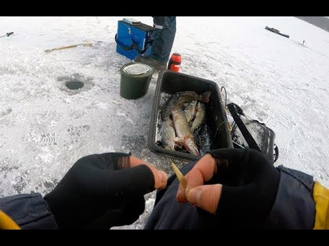 зимняя рыбалка на жерлицы в пермском крае видео