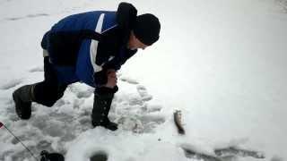 Зимова риболовля. Щука-1