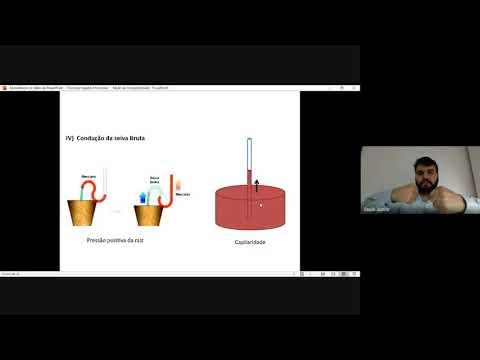 fisiologia-vegetal-31-03