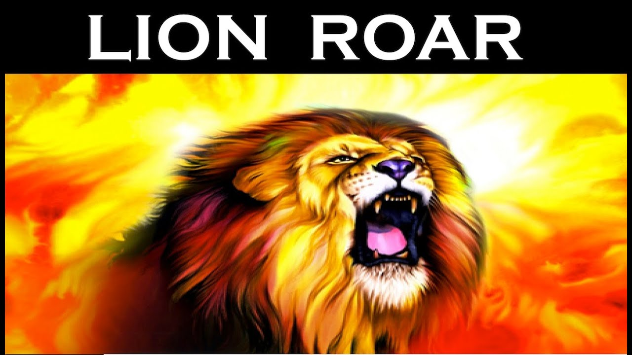 Real Lion Roar Sound Effect | Latest | HD - YouTube - photo#5