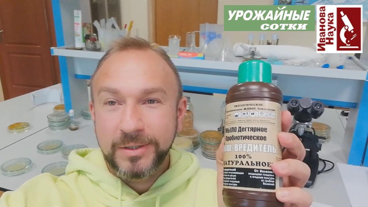 Честный обзор препарата Кыш-вредитель для защиты растений от болезней и вредителей.