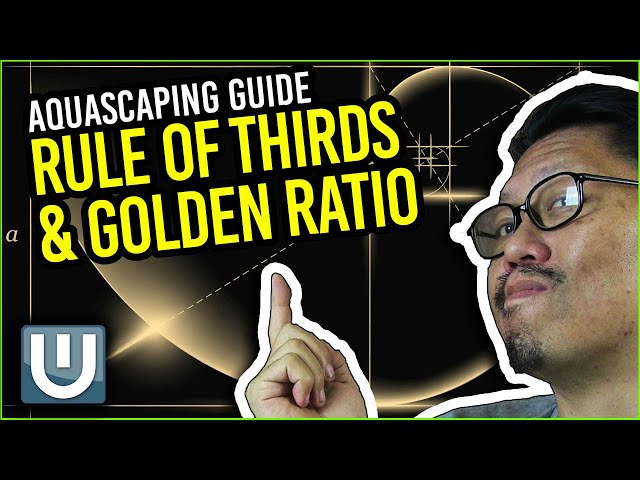 Aquascaping Guide - Rules of Thirds and Golden Ratio | Part 02