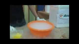 experimento hielo seco - Escuela de Ciencia