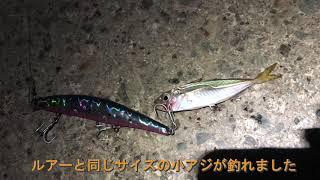 富山遠征 - part1