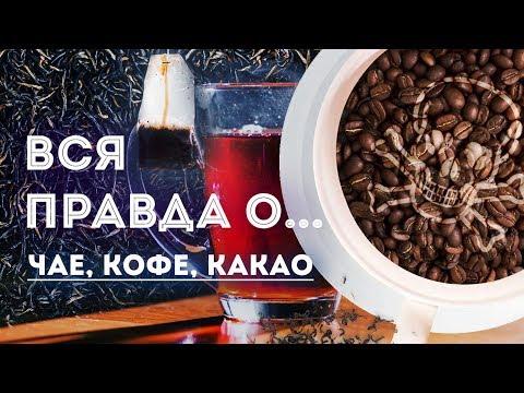 Вся правда о… чае, кофе, какао