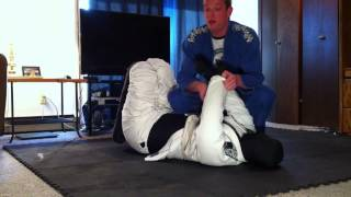 Submission master grappling dummy review