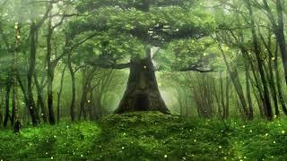 宮崎駿  大提琴演奏 隔壁的龍貓 天空之城 拉普達 世界的約定