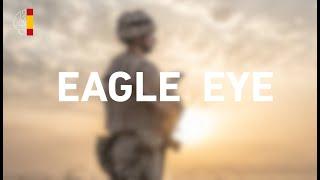Eagle Eye 2021-01