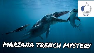 What did scientist really see in The Mariana Trench?