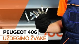 Kaip pakeisti Uždegimo žvakė PEUGEOT 406 PAMOKA | AUTODOC