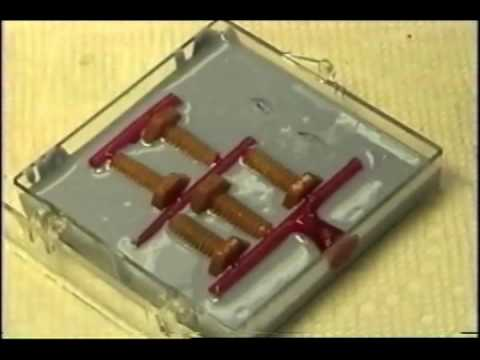 How To: Wax Injection Mold- Duplicating Wax Patterns